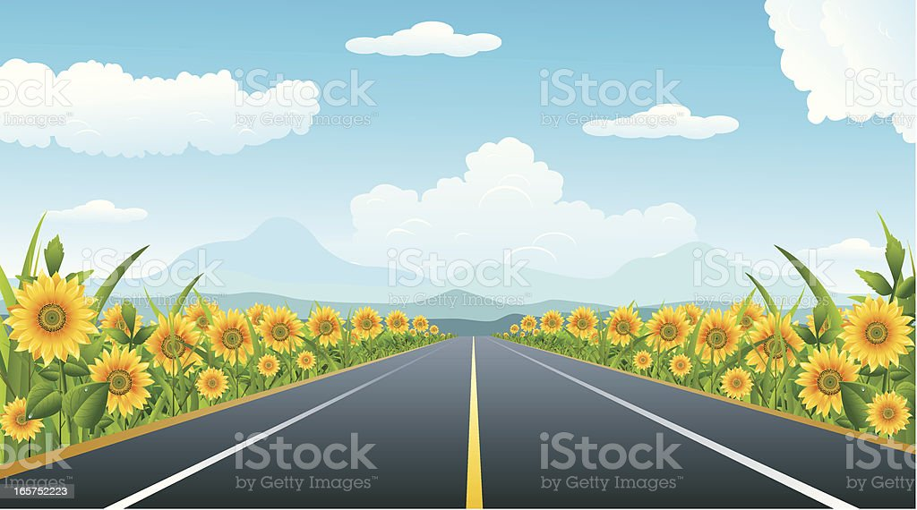 road And sunflower.. royalty-free stock vector art