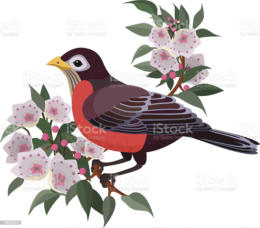 robin and mountain laurel royalty-free stock vector art