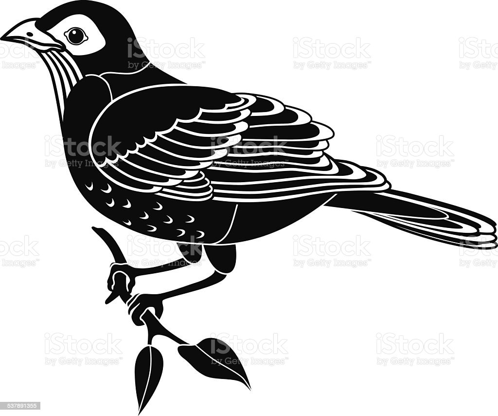 robin perched on branch side view  in black and white vector art illustration
