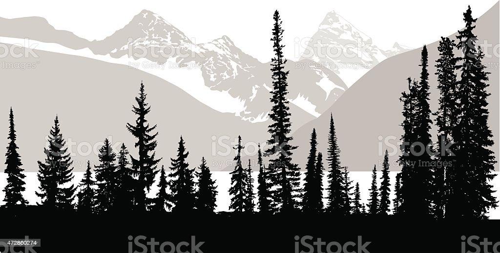 Rocky Mountain Trees vector art illustration