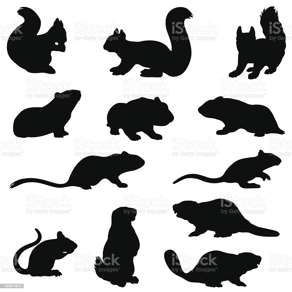 Rodent silhouette collection vector art illustration