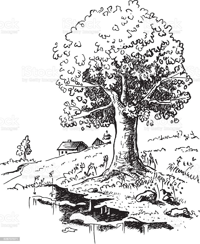 Romantic landscape with big old oak tree standing alone drawing vector art illustration
