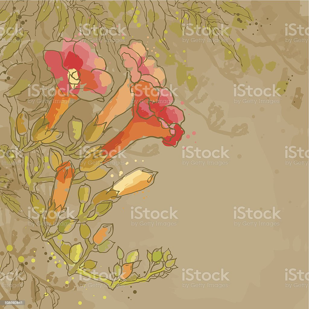 Romantic vector background with tecoma flower royalty-free stock vector art