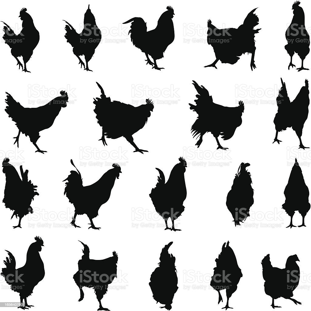 Rooster and hen silhouettes vector art illustration