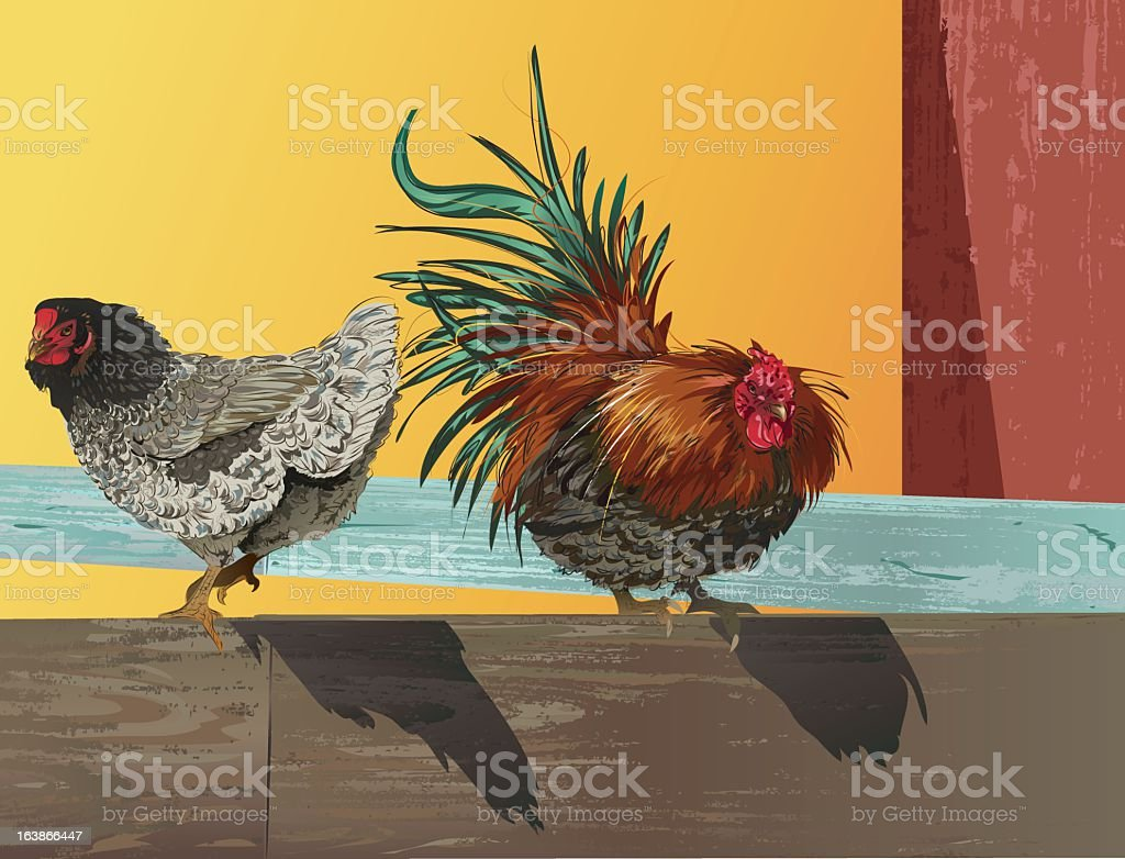 Rooster and Hen Sitting on Old Fence royalty-free stock vector art