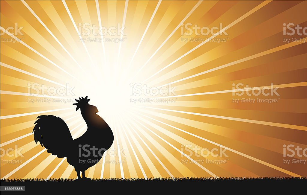 Rooster Crowing at Dawn Background vector art illustration