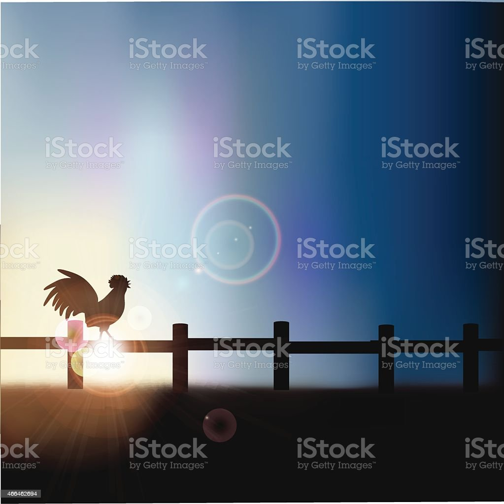 Rooster crowing at sunrise background with copy space vector art illustration