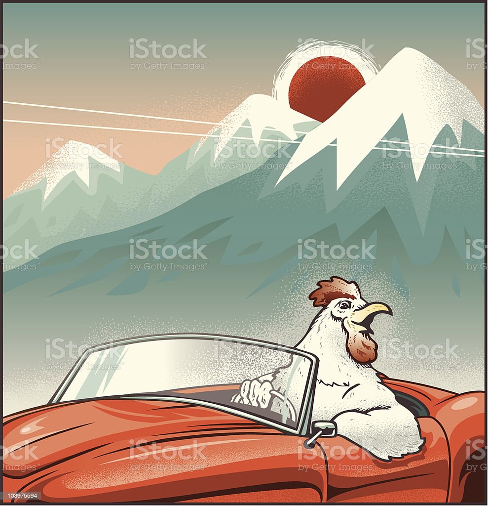 Rooster Driving Convertible vector art illustration
