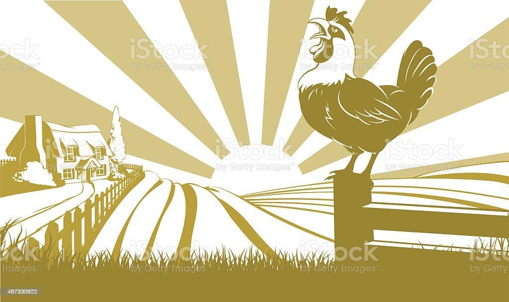 Rooster farm field concept vector art illustration