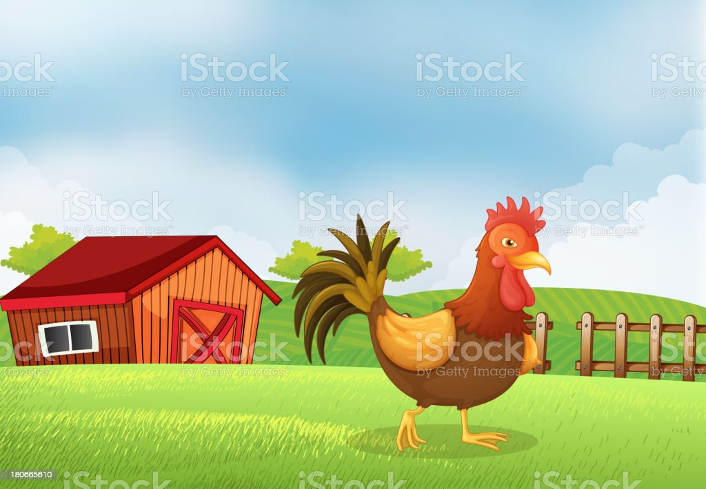 rooster in farm with a wooden house at the back royalty-free stock vector art