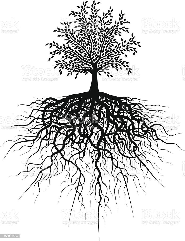 Root tree vector art illustration