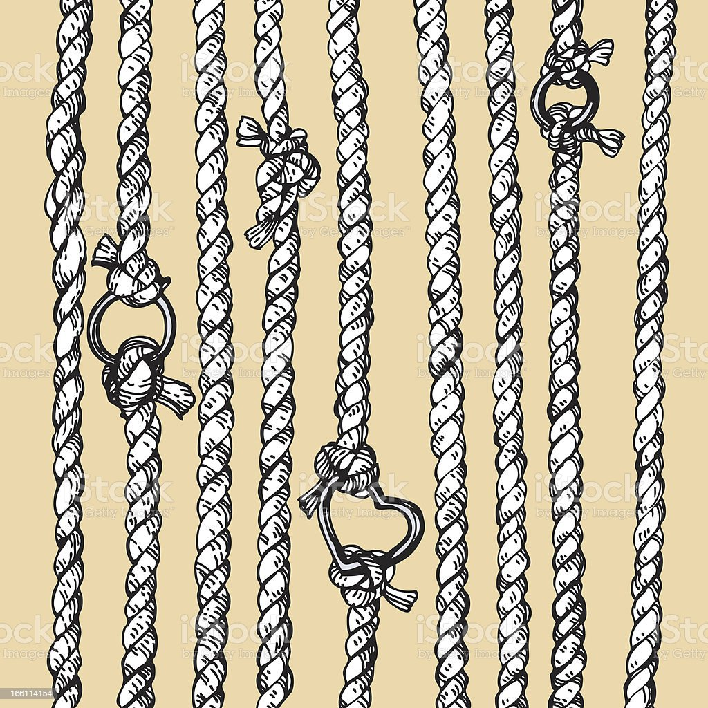 ropes with rings vector art illustration