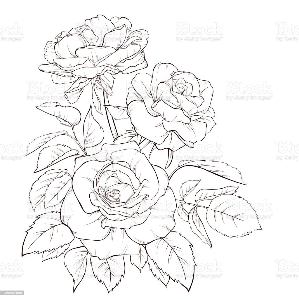 Free Printable Skull And Roses Coloring Pages Free Best
