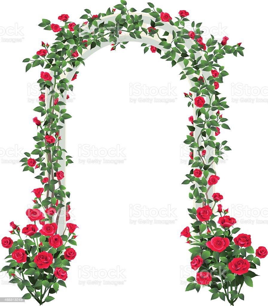 Rose Garden Arbor vector art illustration