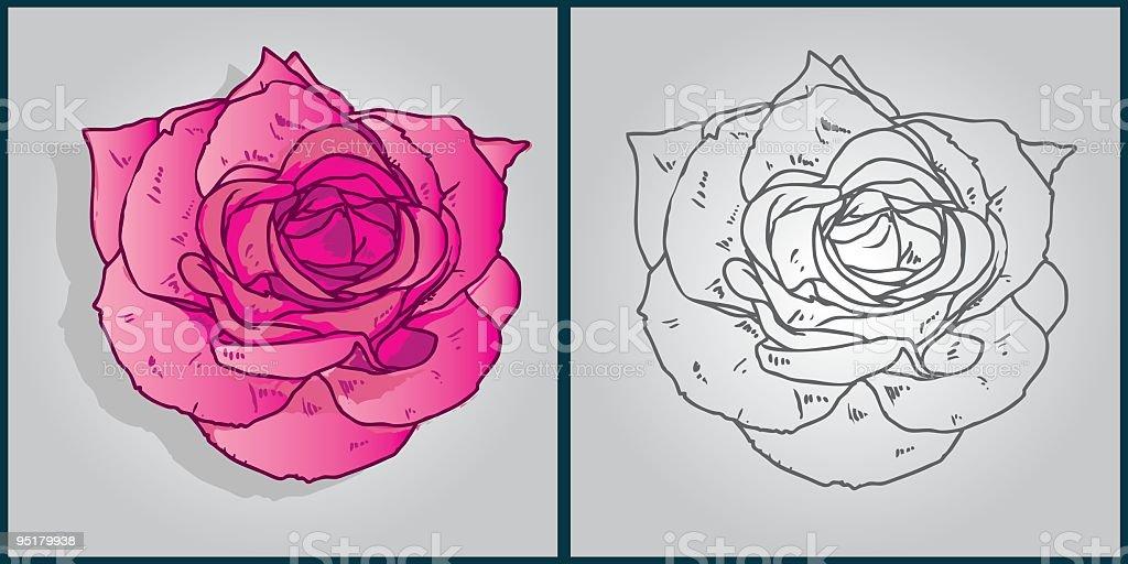 rose royalty-free stock vector art