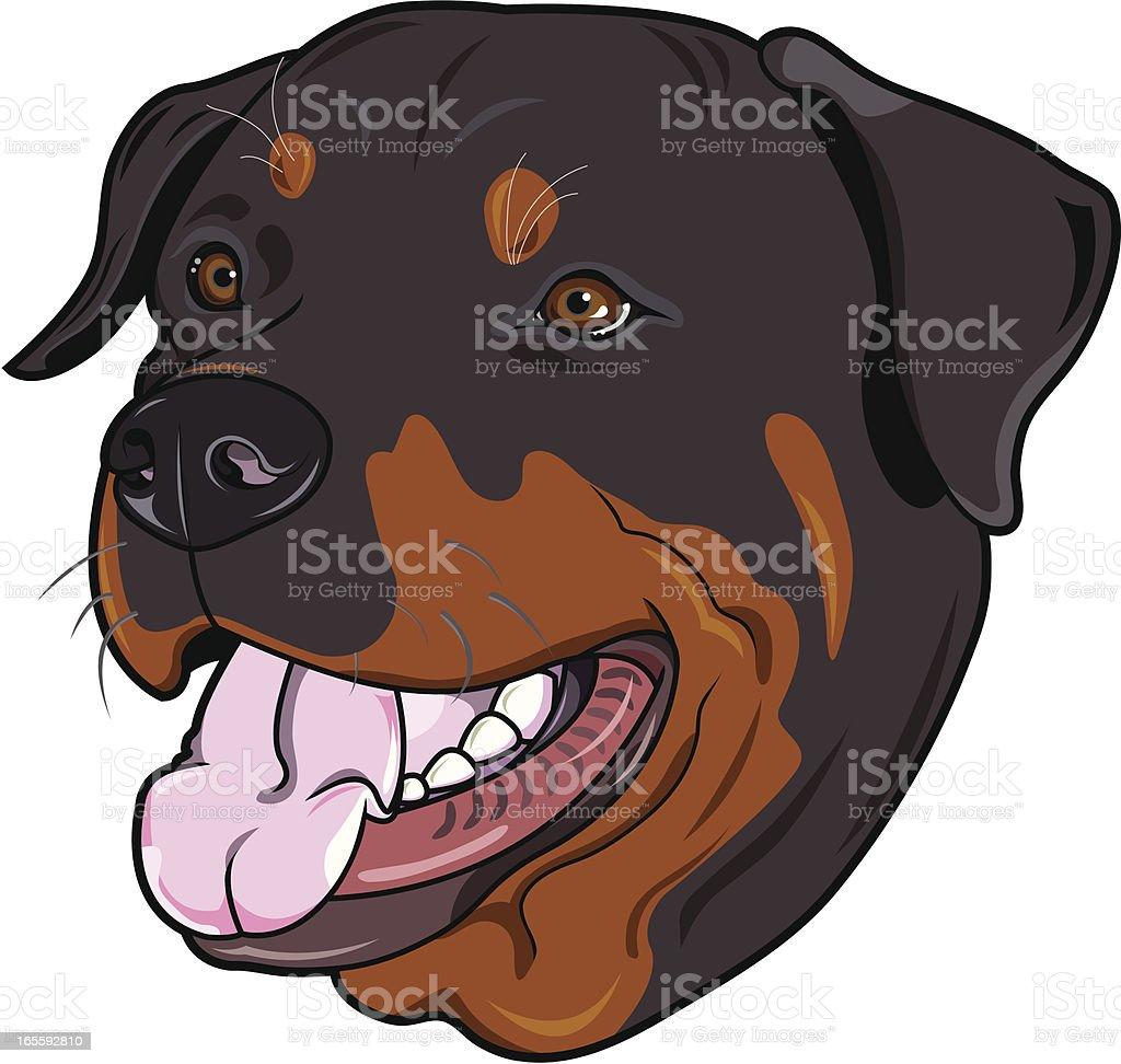 Rottweiler (dog) royalty-free stock vector art