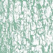 Rough texture of bark