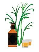 Rum set. Alcohol drink, glasses, shots, rum bottle, sugar cane.