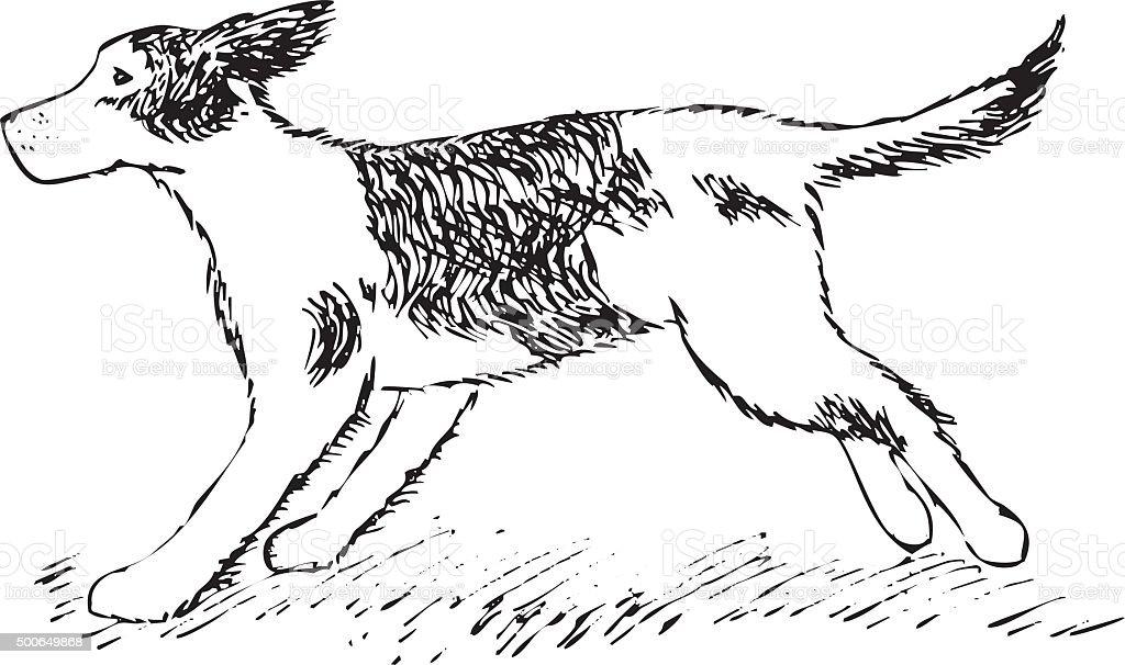 running Dog on grass hand drawing vector art illustration