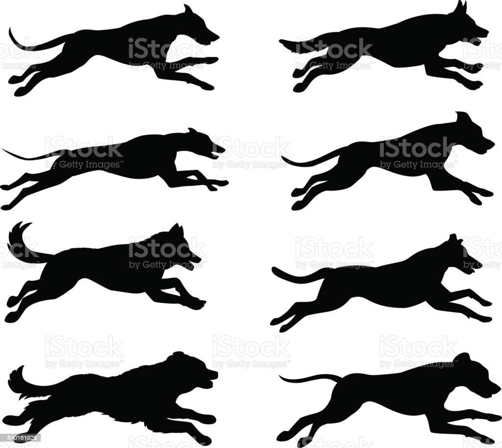 Running dogs silhouette vector illustration vector art illustration