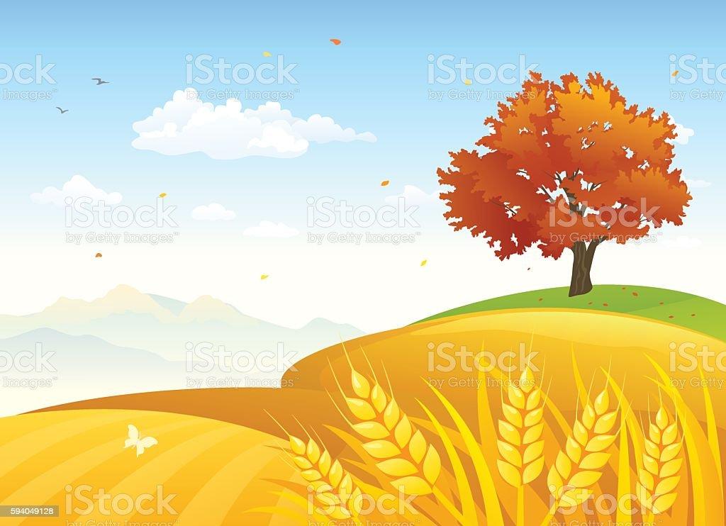 Rural autumn fields vector art illustration