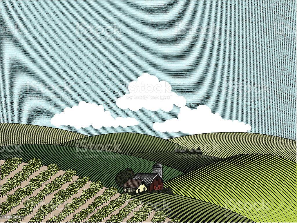 Rural Farm Scene Color royalty-free stock vector art