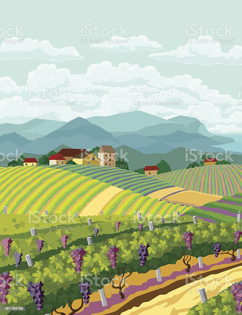 Rural landscape. royalty-free stock vector art