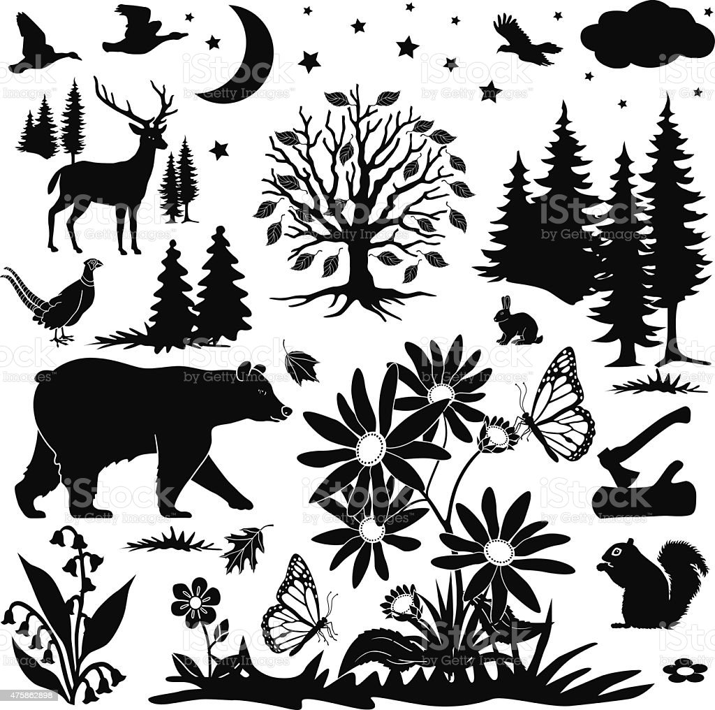 rural woodland meadow design elements in autumn vector art illustration