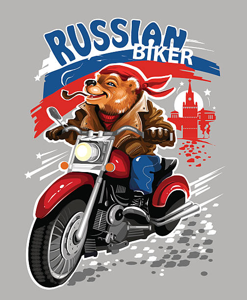 Cartoon Of The Bear On Motorcycle Clip Art, Vector Images ...