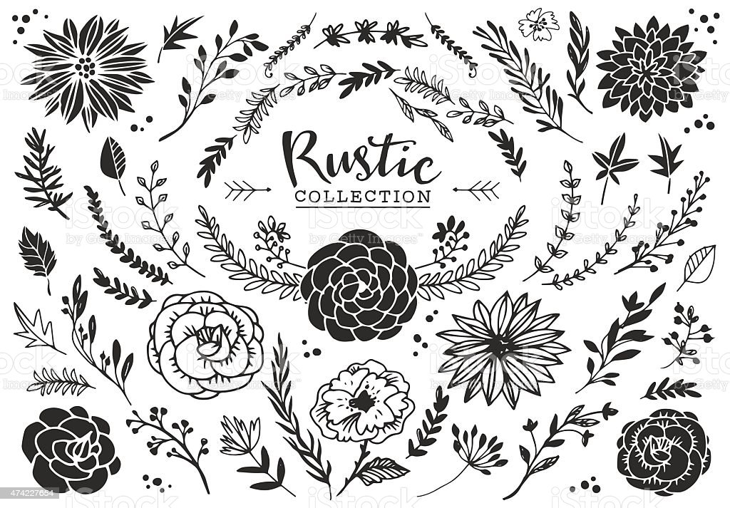 Rustic decorative plants and flowers collection. vector art illustration