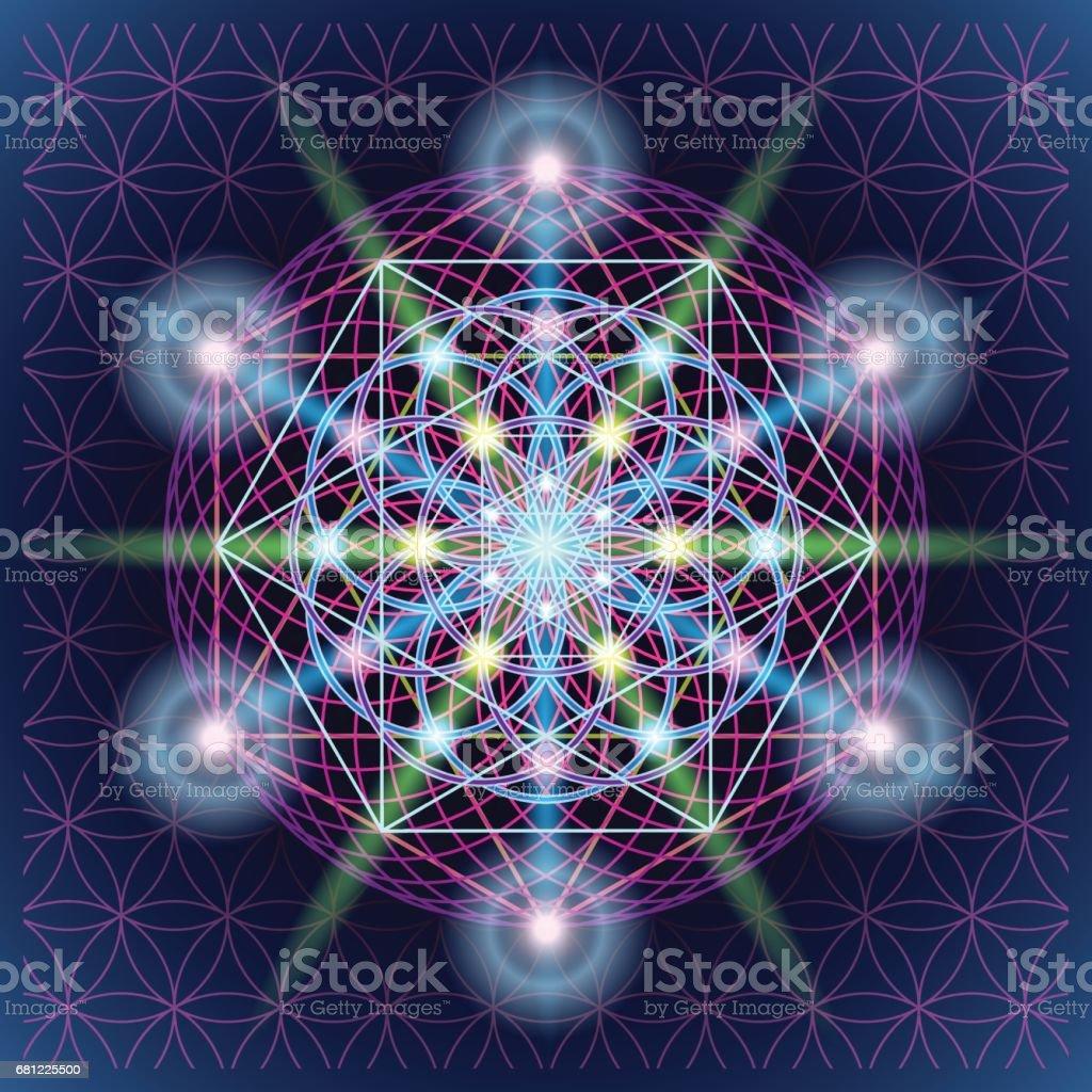 Sacred Geometry Mandala vector art illustration