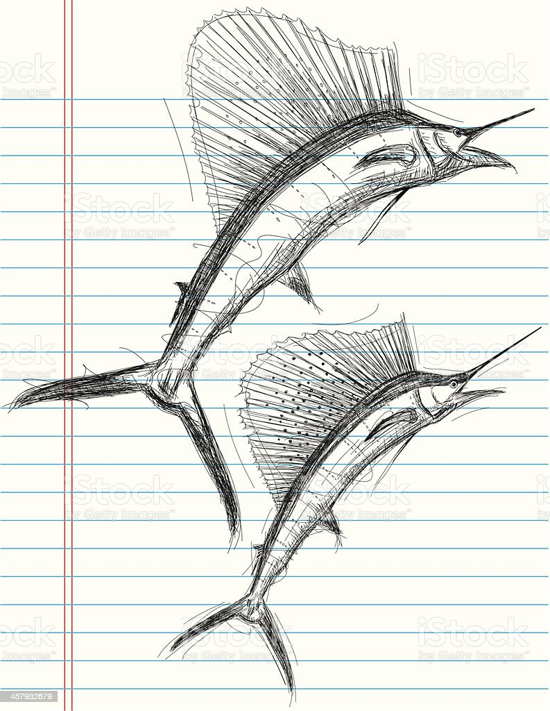 Sailfish sketches royalty-free stock vector art