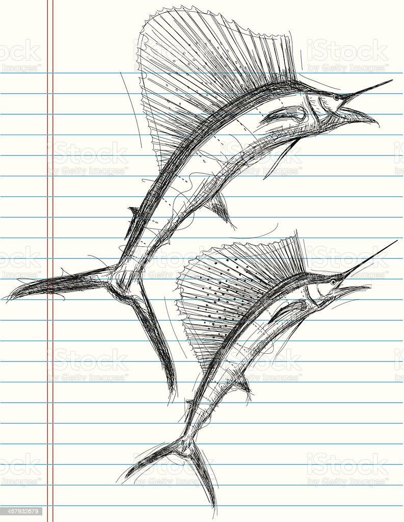 Sailfish sketches vector art illustration