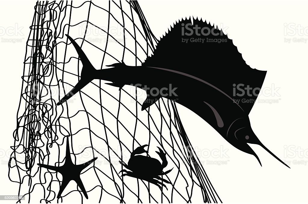 SailFish vector art illustration