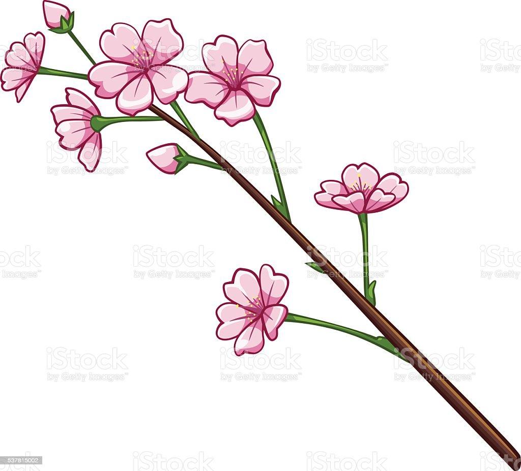 Sakura cartoon style royalty-free stock vector art