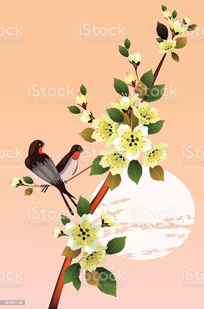 sakura .Evening in the garden blooming cherry vector art illustration