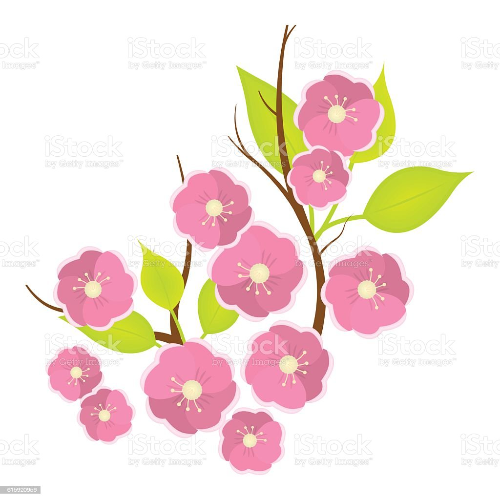 Sakura flowers icon in cartoon style isolated on white background sakura flowers icon in cartoon style isolated on white background royalty free stock vector dhlflorist Images