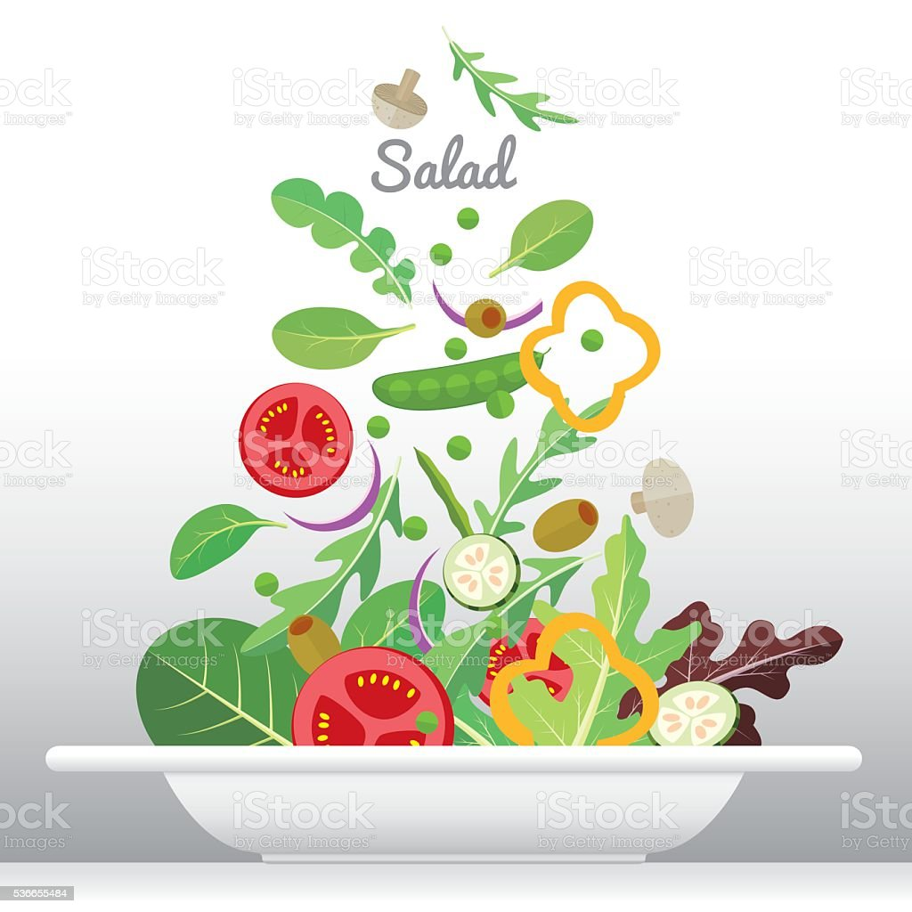 salad dish vector art illustration