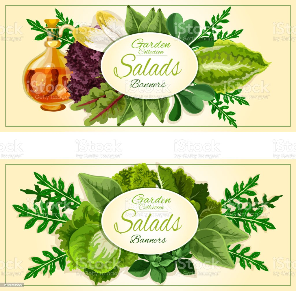 Salad greens and vegetable leaves banners set vector art illustration