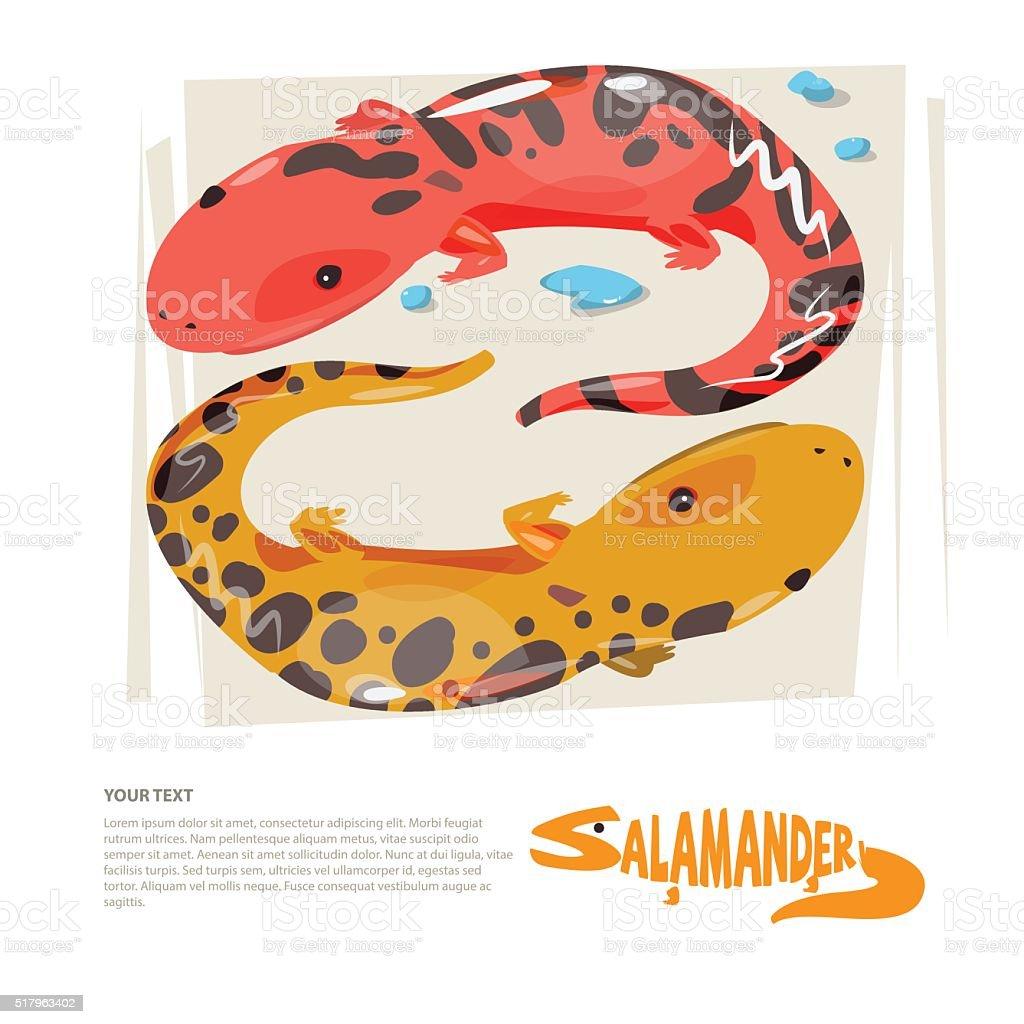 Salamander with typograohic design - vector vector art illustration