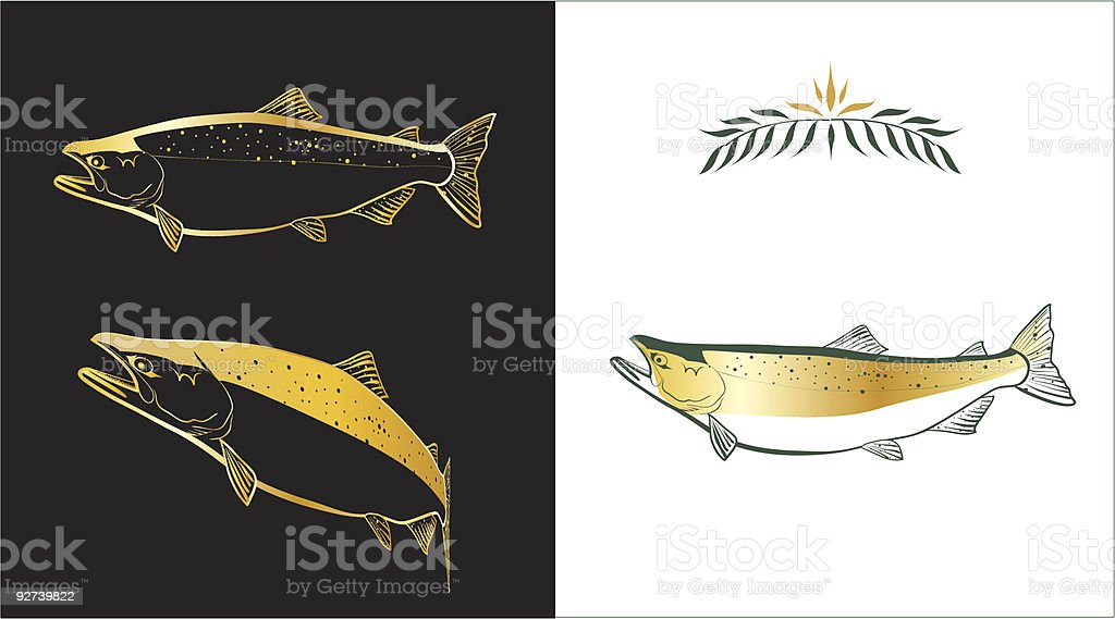 Salmon royalty-free stock vector art