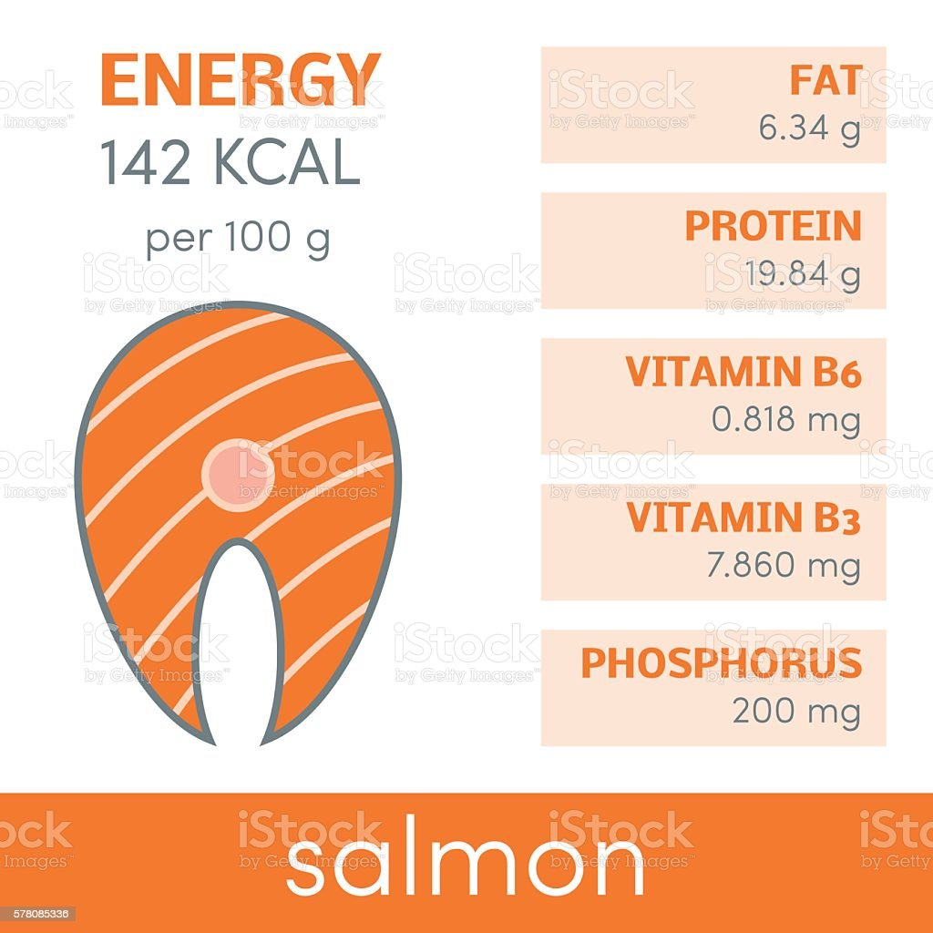 Salmon vector infographic vector art illustration
