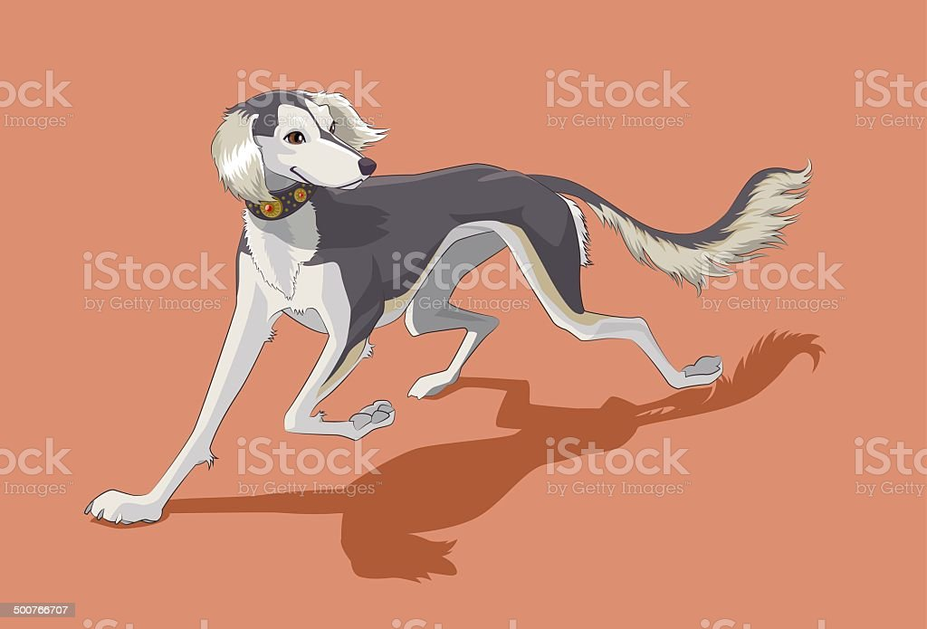 Saluki royalty-free stock vector art