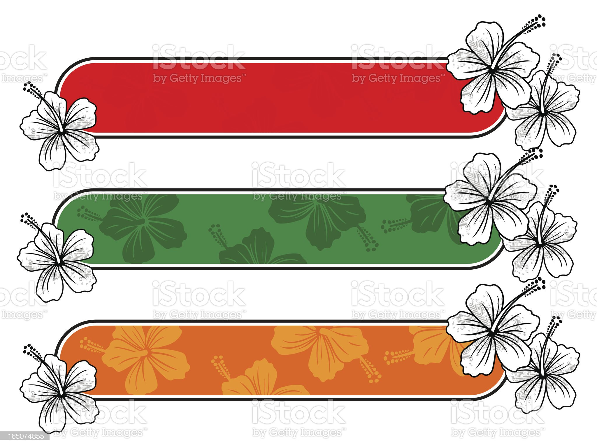 sample hibiscus stripes ll royalty-free stock vector art