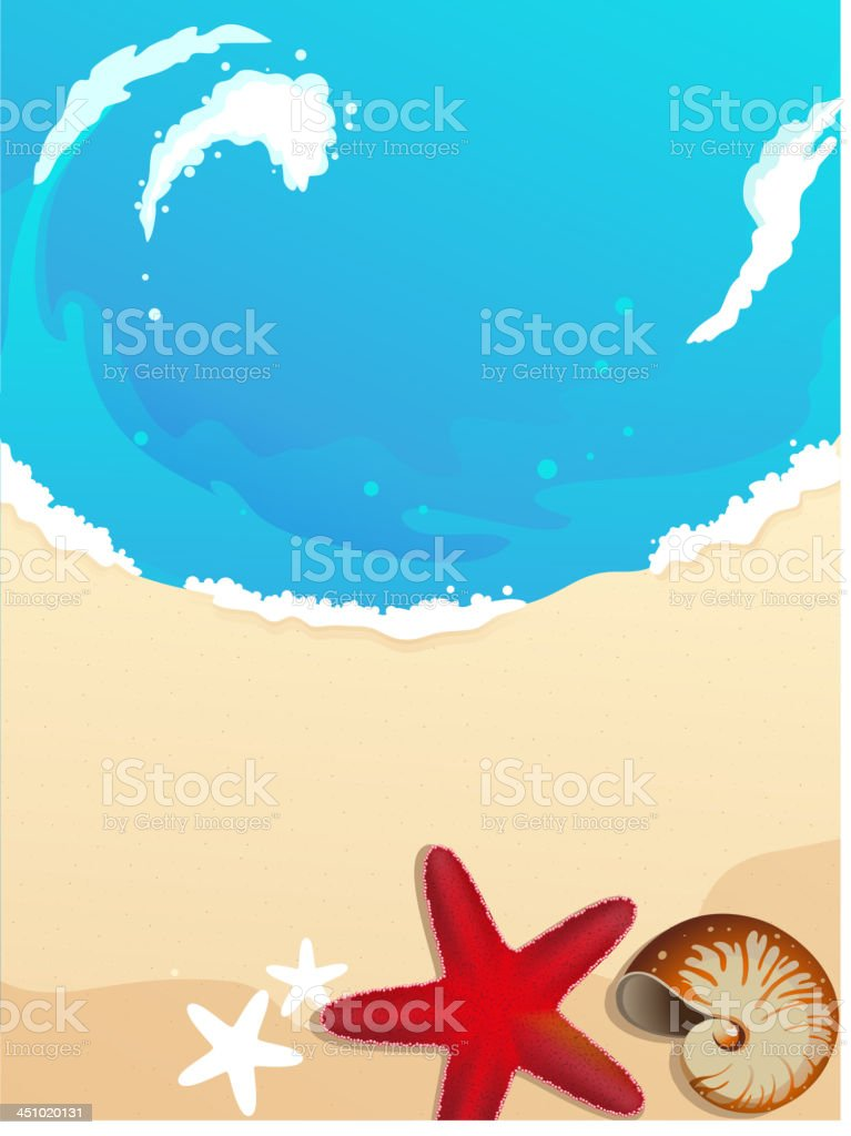 Sandy coast with starfish and cockleshell royalty-free stock vector art