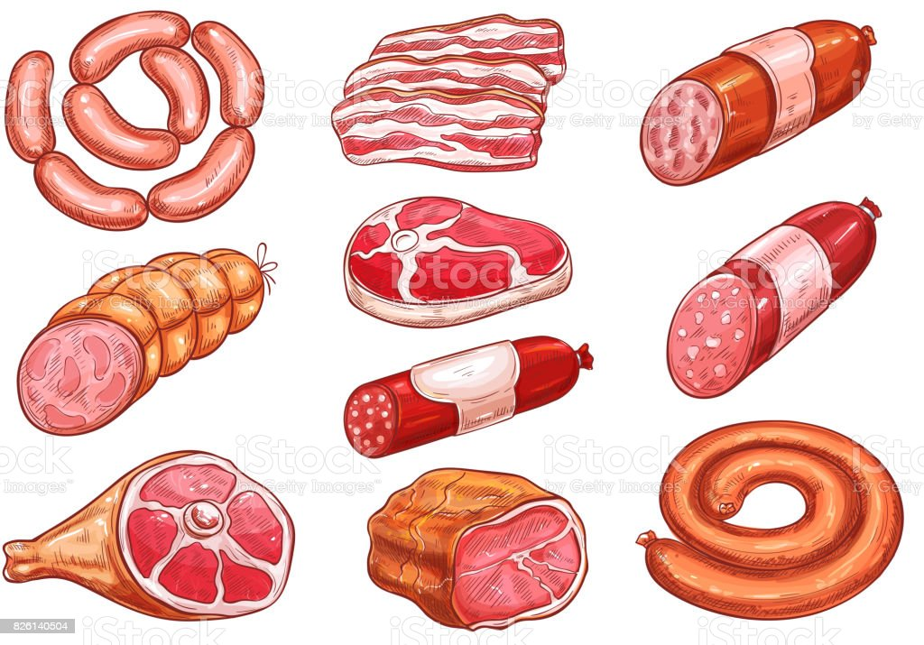 Sausage and meat sketch set for food design vector art illustration