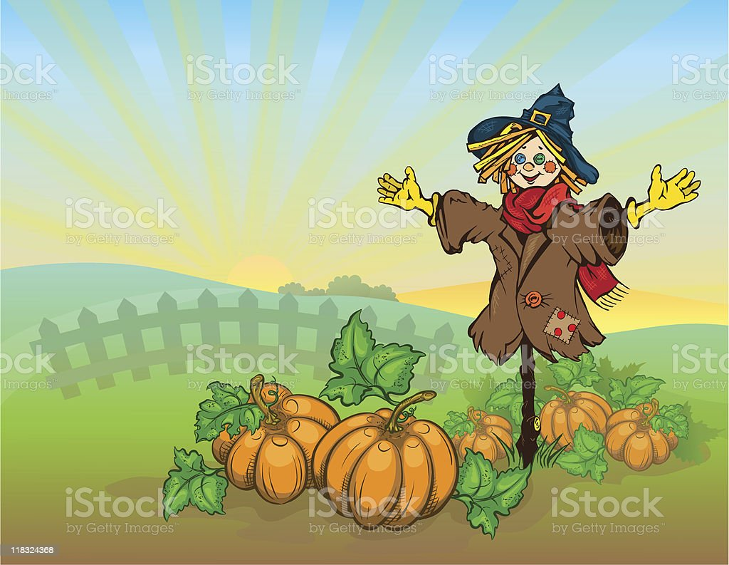 Scarecrow and pumpkins. royalty-free stock vector art
