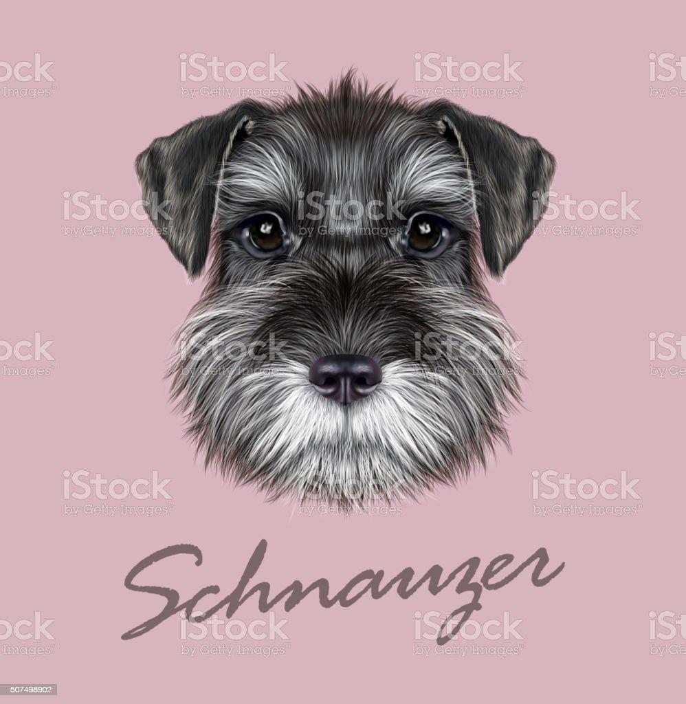 Schnauzer Dog Portrait vector art illustration