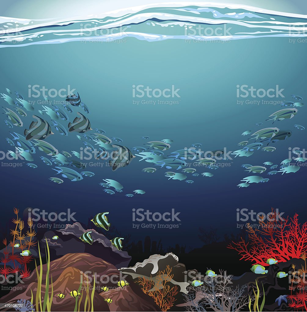 School of fish and coral reef vector art illustration