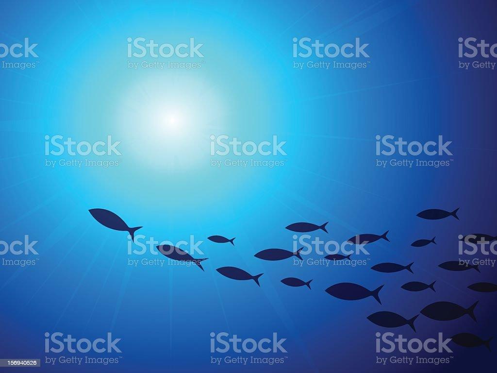 school of fish underwater vector art illustration